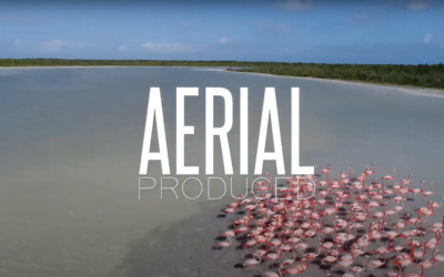 Aerial Produced | Who We Are & What We Do